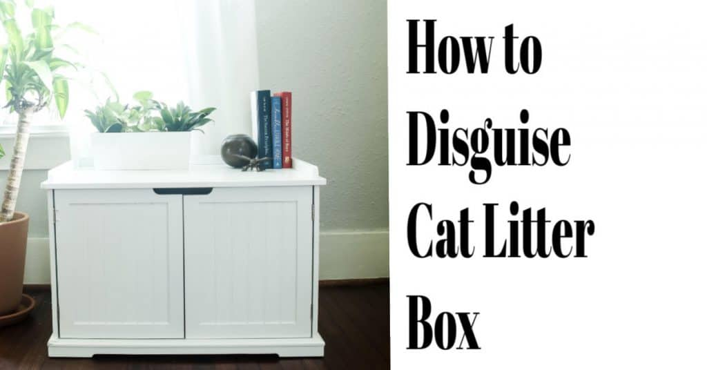 Disguise you cat litter box inside a cabinet